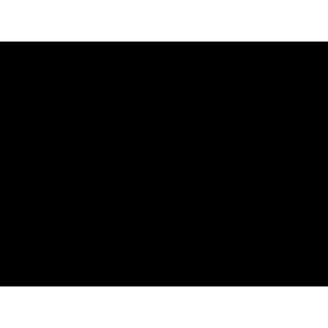 دریچه گاز لندکروزر